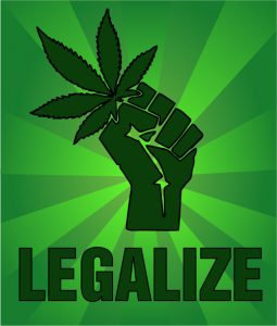 legislation des cannabis